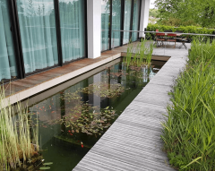 Bassin de jardin par Horizon nature SARL